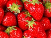 Aardbeien vertragen cognitieve aftakeling