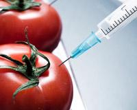 Meer kennis over voedselveiligheid met nieuwsbrief VMT