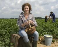 Introductie PolderGoud biologisch geschilde aardappelen