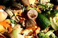 Nieuwe methode tegen voedselverspilling