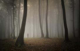 Verdwalen we in een woud van keurmerken?