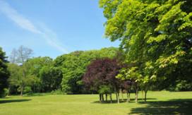 Friezen willen groene omgeving, Groningers en Drenten voorzieningen