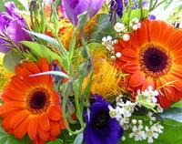 Bloemen voor zorgverleners