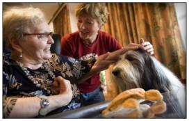 'Huisdieren in de zorg vaak een struikelblok'