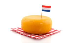 Kaas in de zorg: de meest populaire merken zijn…