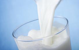 Melk is niet goed voor elk?