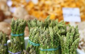 Streven: voedsel in 2020 veel duurzamer