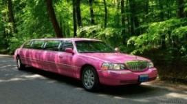 Roze limo rijdt voor tolerantie