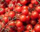 Attachment tomaten 80x64
