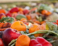 Catering wil meer inzicht in voedselverspilling