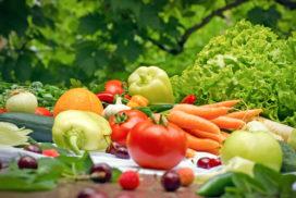 Biologisch eten in het ziekenhuis: 4 inzichten