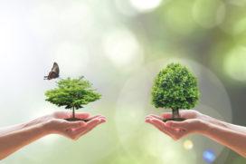 Healing environment in het ziekenhuis en de zorginstelling